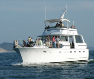 Motoryacht Chris Craft Roamer 55 Yachtcharter in Saugatuck