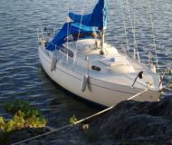 Sailing yacht Albin Viggen for charter in Svinninge