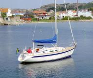 Hallberg Rassy 31 Segelyacht Charter Fehmarn