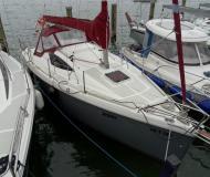 Henk 25 Segelyacht Charter Ludwigshafen