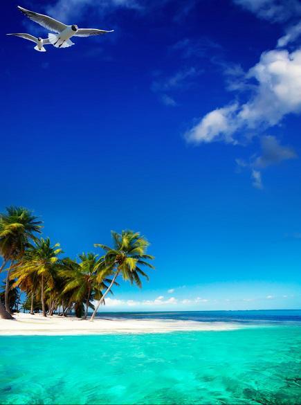 Caribbean Sailing Vacations | 44 Dolphin Splash | Call