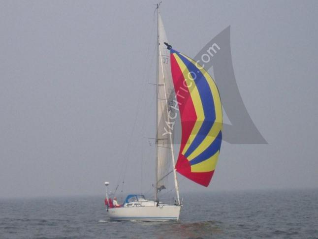 Yacht ff 43 Yachtcharter in Stavoren