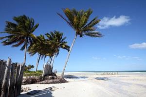 Cayo Guillermo Beach - Yacht Charter Cuba | YACHTICO.com
