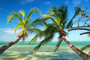 Törnvorschlag für die Bahamas